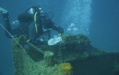 "Diving as a Scientist: Training, Recognition, Occupation – The ""Science Diver"" Project"