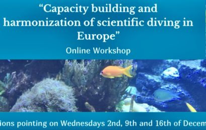 Capacity building and harmonization of scientific diving in Europe: Follow up and steps ahead